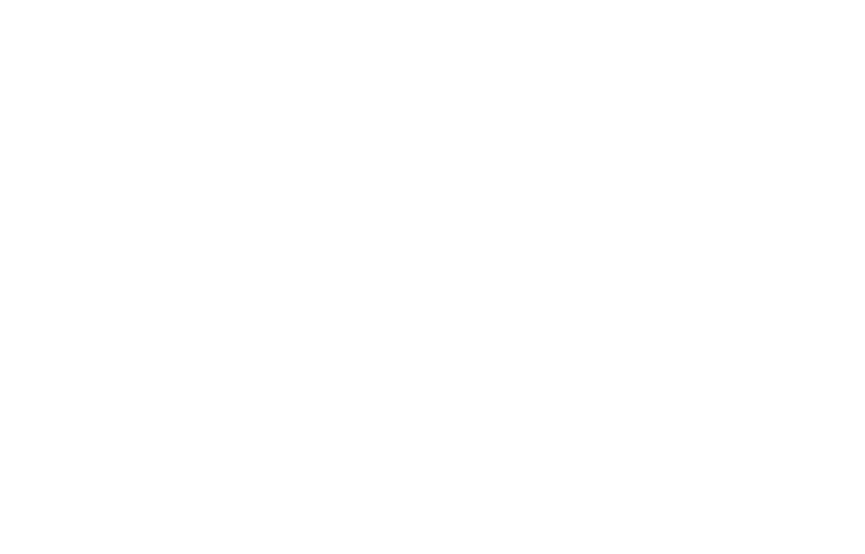 BIG_small_logo_white